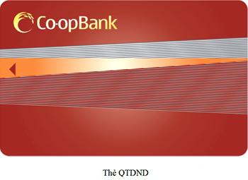The-QTDND