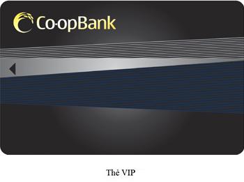 the-VIP